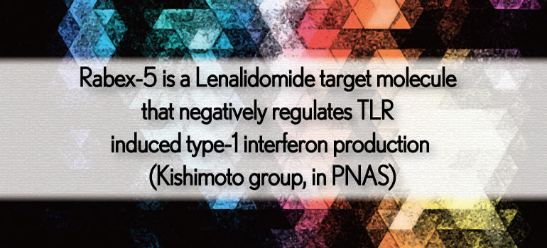 Rabex-5 is a Lenalidomide target molecule that negatively regulates TLR induced type-1 interferon production (Kishimoto group, in PNAS)