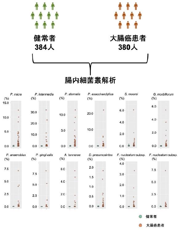 大腸癌患者と健常者の腸内細菌叢の大規模比較解析